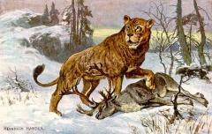 Bayern - ein Land der Löwen