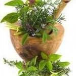 Kluge Eltern favorisieren pflanzliche Medizin für ihr Kind
