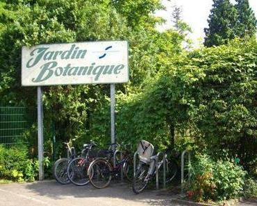 Straßburgs botanischer Garten – ein kleines Paradies