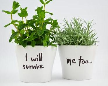 Natur zuhause: I will survive