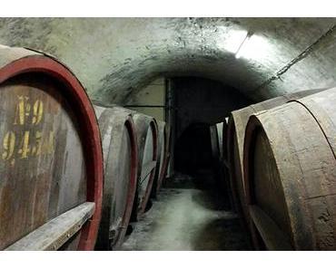 Recherche im Bierkeller von Kaltenberg – Spuren der Vergangenheit