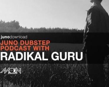 Radikal Guru – Summer 2015 Mix for Juno Records *FREE DOWNLOAD*