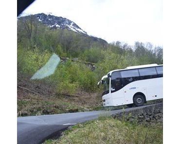 Kreuzfahrt: Unterwegs mit der Flambahn in Norwegen