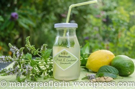 Durst??? – Limo mit Minze, Limette und Kardamom!!!