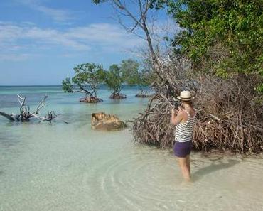 Kuba Highlights: 5 Reiseblogger verraten Geheimtipps für den perfekten Tag auf Kuba