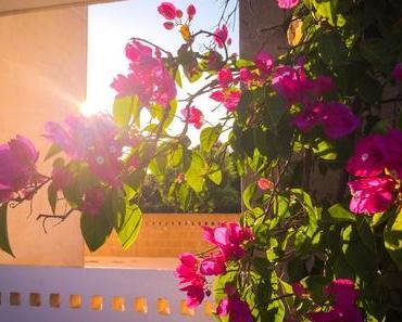 Ferienbilder: Unsere Tipps für schöne Ferienfotos