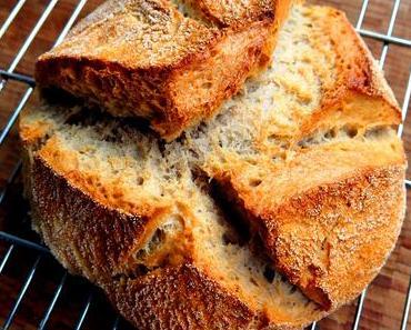 Schöner scheitern: köstliches italienisches Brot – mit Startschwierigkeiten