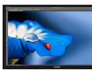 IFA: 5K-Monitor von Philips mit 5.120 × 2.880 Bildpunkten