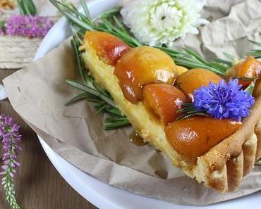 Gelbe Torte: Cheesecake mit Aprikosen und Rosmarin