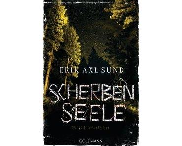 "[MINI-REZENSION] ""Scherbenseele"" (Band 1)"