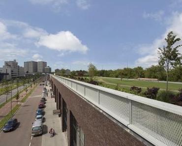 80.000 Quadratmeter Grün: In Rotterdam befindet sich der größte Dachpark Europas
