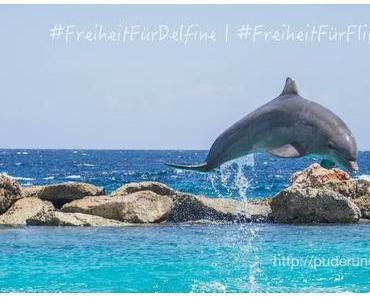 Freiheit für Flipper