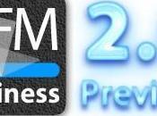 gFM-Business Professional Preview Download.