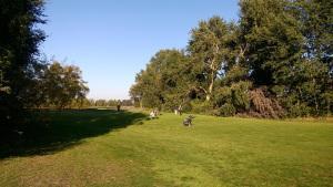Die letzten warmen Sonnenstrahlen ausgenutzt – beim Golfen