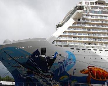 Schiffsbau auf großem Niveau: Die Meyer-Werft in Papenburg
