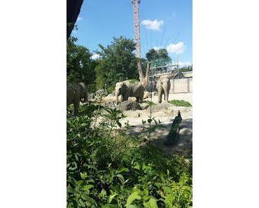 Tierpark Hellabrunn - der Zoo Münchens