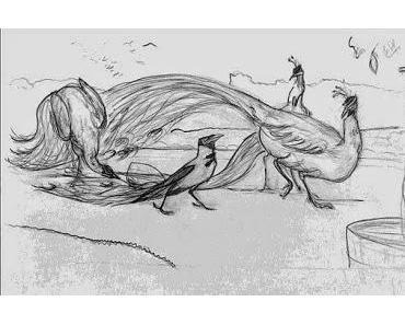 Aventin Blog: Der Pfau und die Dohle • Fabel von Aesop [del.icio.us]