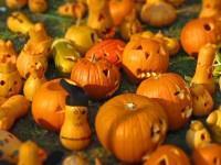 Das Google Maps für Halloweenkostüme