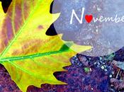 Meine ❤-Herbstlippenstifte