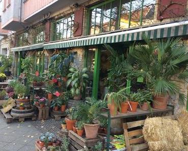 Blumencafé – Der Name ist Programm