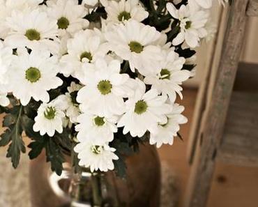 {Flowerday} Weiße Chrysanthemen und eine unzufriedene Mutter