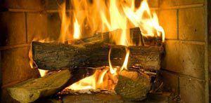 Die besten Holzsorten für den Kaminofen