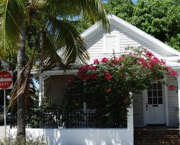 Just like Paradise – 1 Tag in Key West