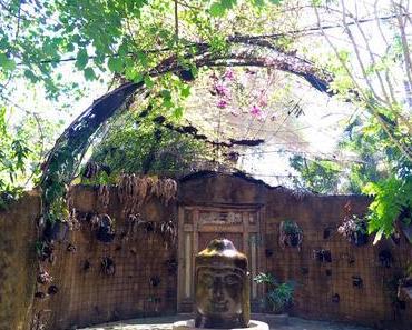 Yoga, Kokosnüsse & ganz viel Ruhe