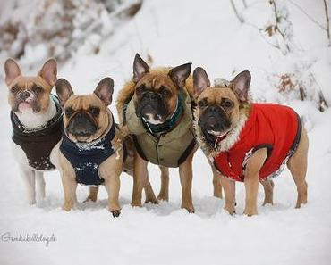 Die Schneeparty