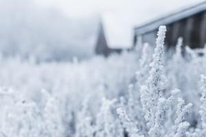Deutscher Kältepreis sucht energieeffiziente Innovationen