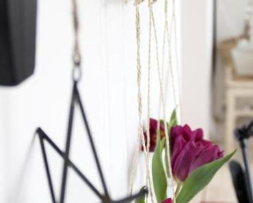 Blumen an´ne Wand  |  DIY Blumenampel