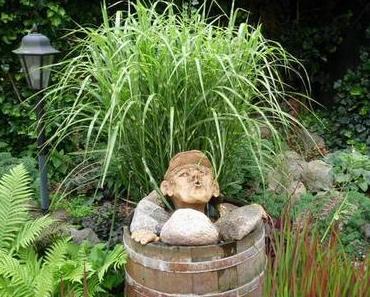 Ein Biotop im Garten anlegen: Tipps für einen kleinen Gartenteich