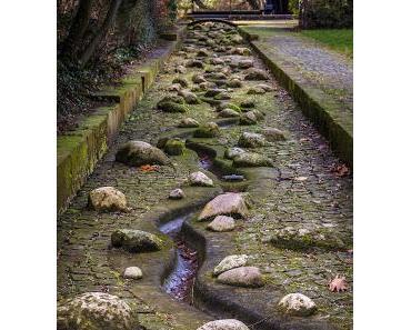 SEINSORIENTIERTE KÖRPERTHERAPIE (66): Anpassung oder wie Natur zur Kultur wird ...