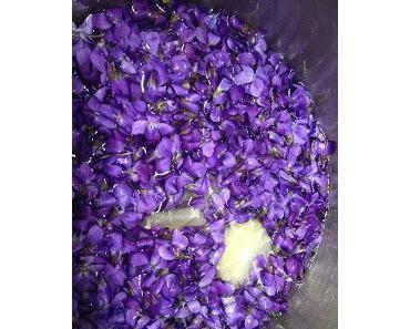 Veilchen Sirup - Das Lila Wunder Nr. 2