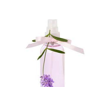Lavendel-Geschirrspülmittel selbst gemacht