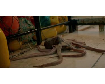Sharknado war gestern