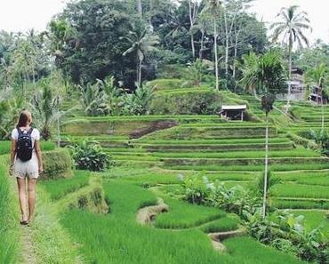 OOTD: Ricefields of Ubud