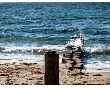 Was für ein Angebot: Strandpraktikum an der Ostsee