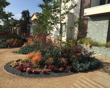 Kalifornien: Wasser sparen im Vorgarten