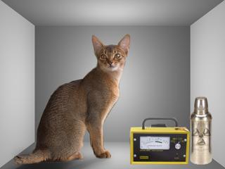 Quantenmechanik: Schrödingers Katze geklont