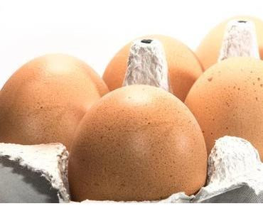 Tag der Eier in den USA – der amerikanische National Egg Day