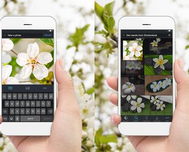 Shutterstock launcht umgekehrte Bildsuche für iOS