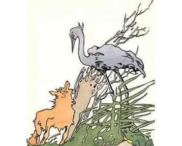 Der Fuchs und der Storch | Persönliche Interessen | Fabel von Lessing