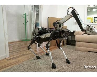 Vorsicht – bissiger Roboter!
