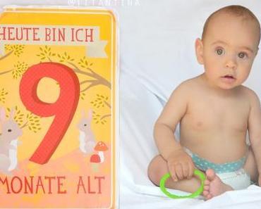 9 Monate Babyglück - Milestone Cards