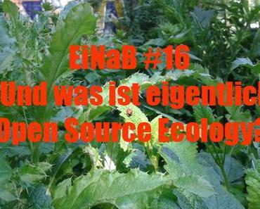 """Das Huhn ist Gastgeber bei #EiNaB – und entdeckt """"Open Source Ecology"""""""