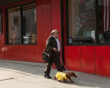 REVIEW | Wiener Dog