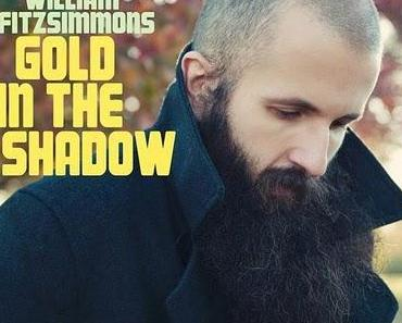 """William Fitzsimmons """"Gold In The Shadow"""""""