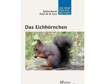 Buch über das Eichhörnchen