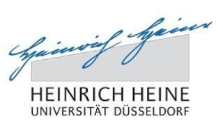 """Vortragsreihe """"Terrorismus in den Medien"""" (Düsseldorf)"""
